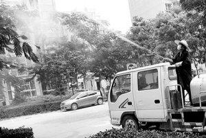 北京确认出现蜱虫 已开始全面排查和消杀