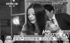 """赵薇出镜《新闻联播》遭热议 丹淳组合继续""""小清新"""""""